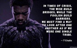 tchalla-bridges-quote